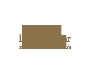 logo-hp-henesy-brown.png
